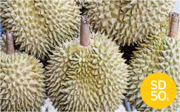 Durian with SD50c logo